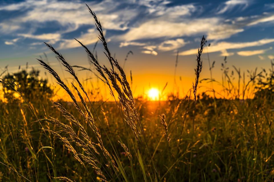 キレイな夕日の画像