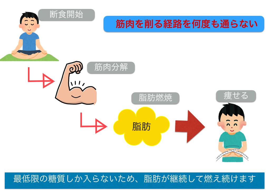 ファステイング【断食】をすると無駄に筋肉が減らない