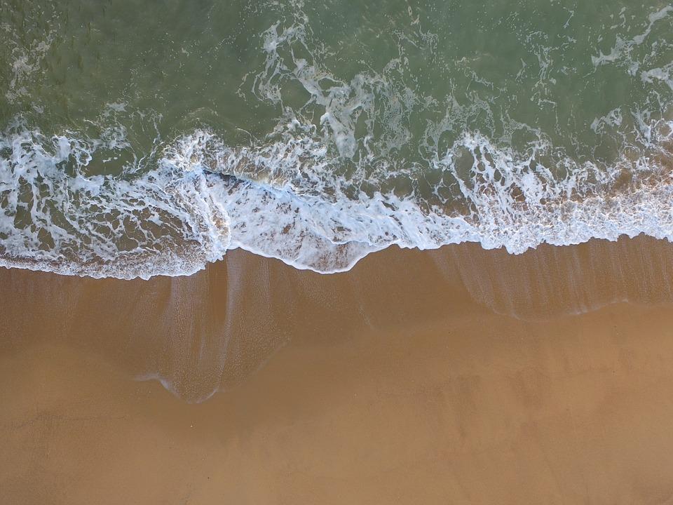 海で血液を浄化することを表した