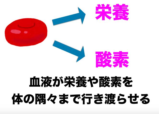 貧血の改善方法