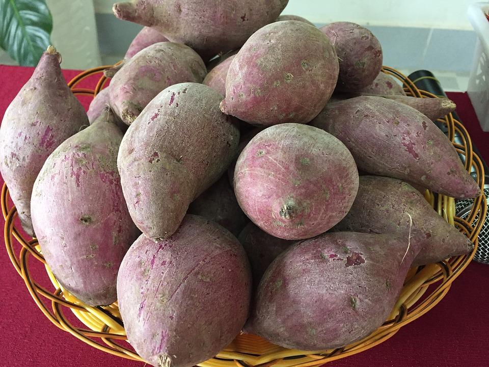 健康的に痩せる食材 イモ