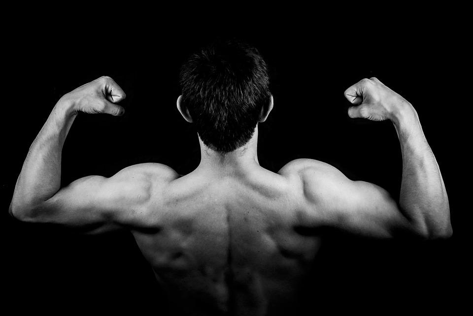 痩せたいから食べないことを選択すると筋肉が減る