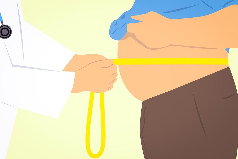 何をやっても痩せない人の原因と食事の方法 栄養学講座